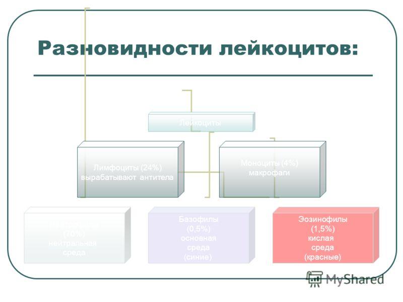 Разновидности лейкоцитов: Лейкоциты Нейтрофилы (70%) нейтральная среда Базофилы (0,5%) основная среда (синие) Эозинофилы (1,5%) кислая среда (красные) Лимфоциты (24%) вырабатывают антитела Моноциты (4%) макрофаги