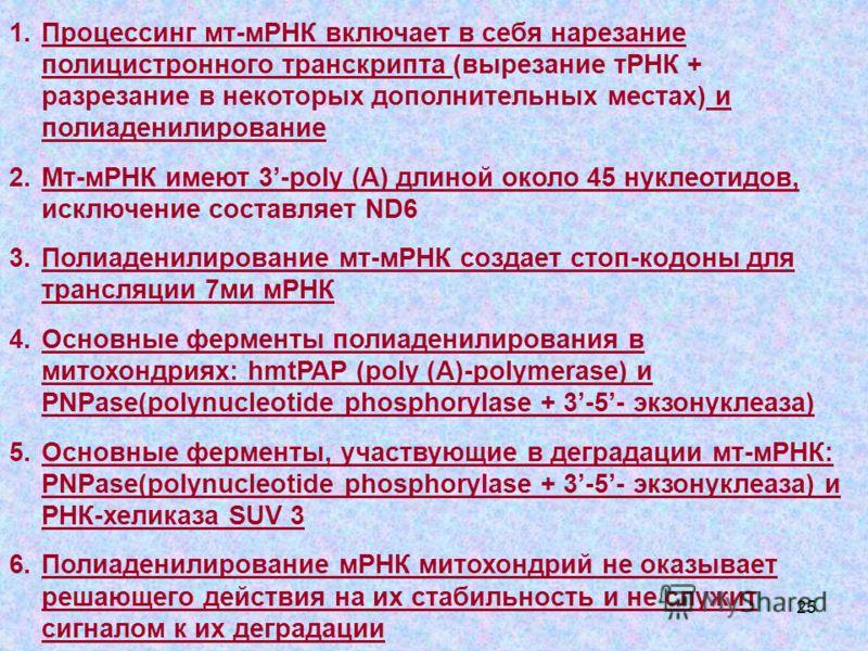 25 1.Процессинг мт-мРНК включает в себя нарезание полицистронного транскрипта (вырезание тРНК + разрезание в некоторых дополнительных местах) и полиаденилирование 2.Мт-мРНК имеют 3-poly (A) длиной около 45 нуклеотидов, исключение составляет ND6 3.Пол
