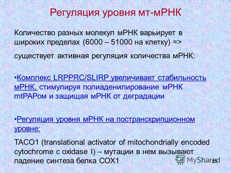 26 Количество разных молекул мРНК варьирует в широких пределах (6000 – 51000 на клетку) => существует активная регуляция количества мРНК: Комплекс LRPPRC/SLIRP увеличивает стабильность мРНК, стимулируя полиаденилирование мРНК mtРАРом и защищая мРНК о