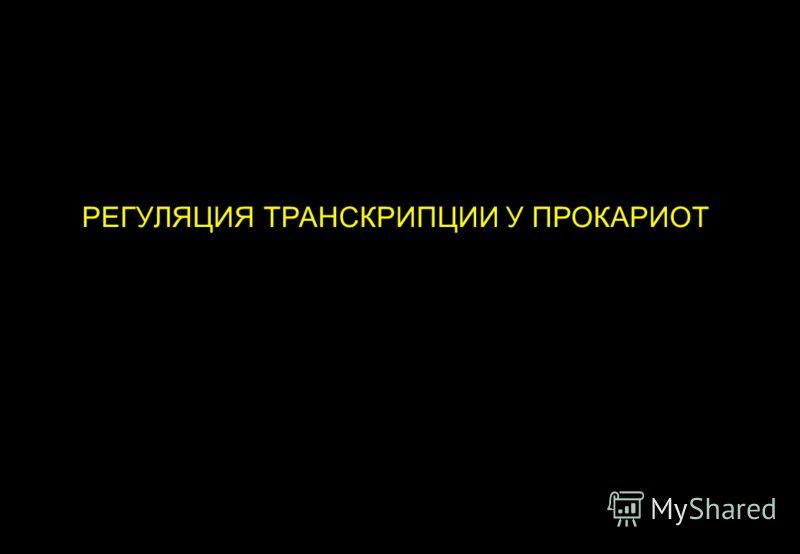 РЕГУЛЯЦИЯ ТРАНСКРИПЦИИ У ПРОКАРИОТ