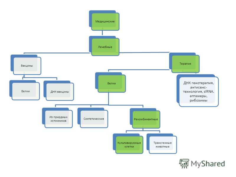 МедицинскиеЛечебныеВакциныБелкиДНК-вакциныТерапияБелки Из прирдных источников СинтетическиеРекомбинантные Культивируемые клетки Трансгенные животные ДНК генотерапия, антисенс- технология, siRNA. аптамеры, рибозимы