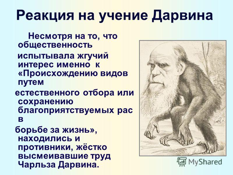 Реакция на учение Дарвина Несмотря на то, что общественность испытывала жгучий интерес именно к «Происхождению видов путем естественного отбора или сохранению благоприятствуемых рас в борьбе за жизнь», находились и противники, жёстко высмеивавшие тру