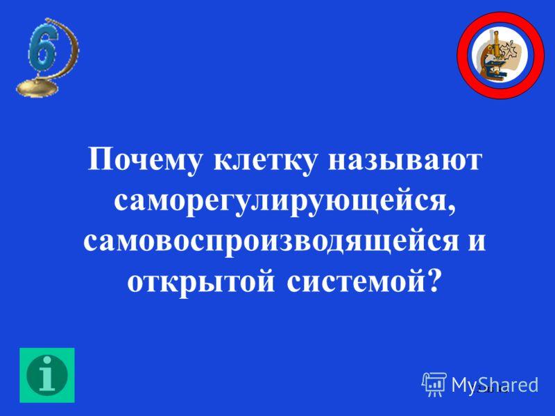 Ответы: 1. Рибосомы. 2. Митохондрии. 3. В лизосомах. 12 из 42
