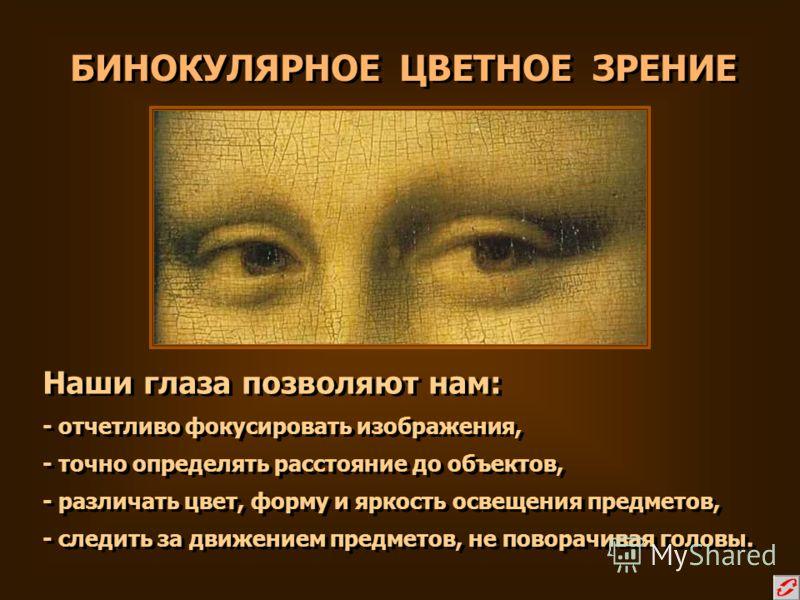 БИНОКУЛЯРНОЕ ЦВЕТНОЕ ЗРЕНИЕ Наши глаза позволяют нам: - отчетливо фокусировать изображения, - точно определять расстояние до объектов, - различать цвет, форму и яркость освещения предметов, - следить за движением предметов, не поворачивая головы. Наш