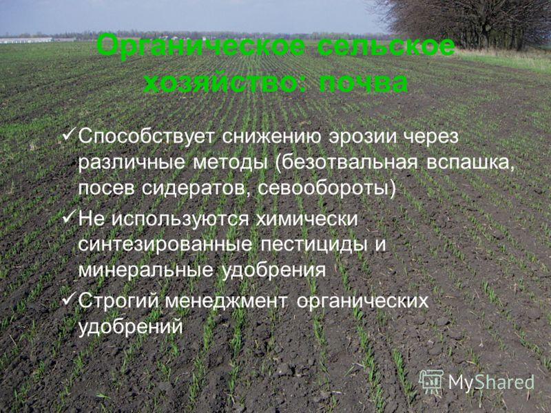 12 Органическое сельское хозяйство: почва Способствует снижению эрозии через различные методы (безотвальная вспашка, посев сидератов, севообороты) Не используются химически синтезированные пестициды и минеральные удобрения Строгий менеджмент органиче
