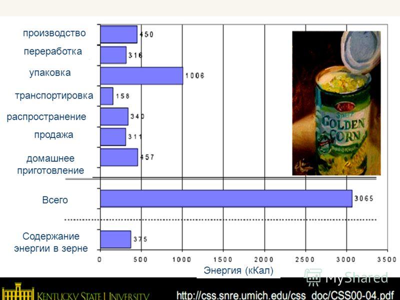 20 производство переработка упаковка транспортировка распространение Всего продажа домашнее приготовление Содержание энергии в зерне Энергия (кКал)