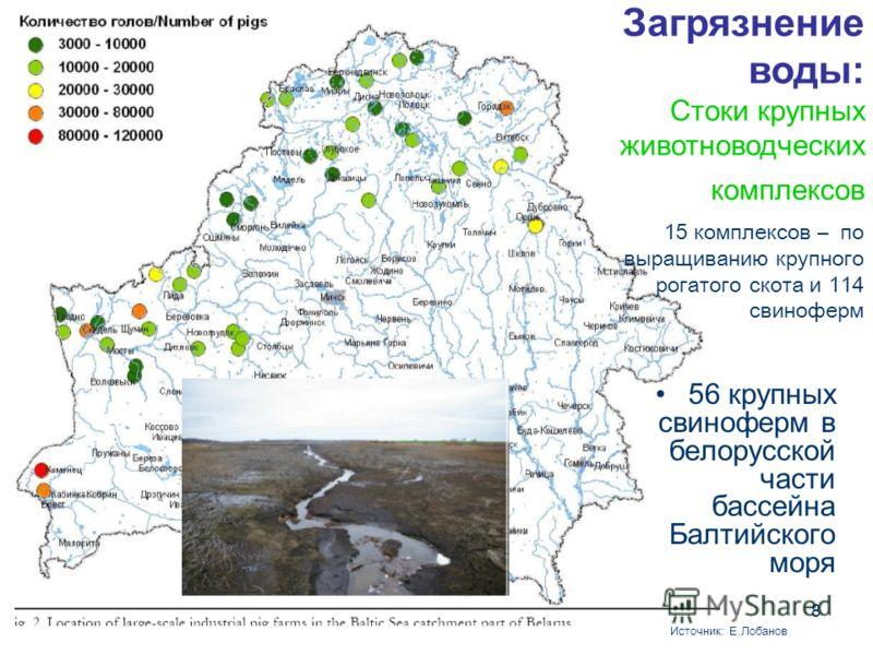 8 56 крупных свиноферм в белорусской части бассейна Балтийского моря Источник: Е.Лобанов Загрязнение воды: Стоки крупных животноводческих комплексов 15 комплексов – по выращиванию крупного рогатого скота и 114 свиноферм