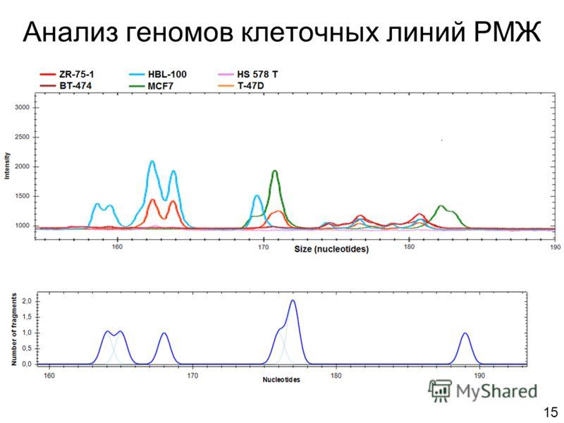 Анализ геномов клеточных линий РМЖ 15