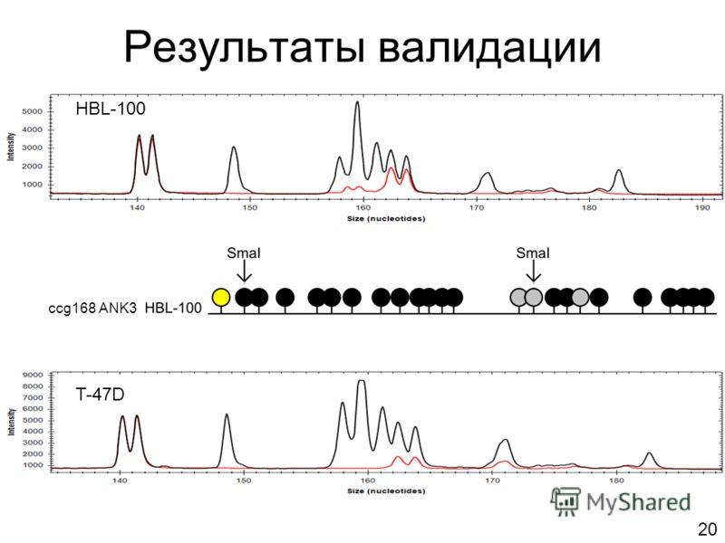Результаты валидации HBL-100 ccg168 ANK3 T-47D 20