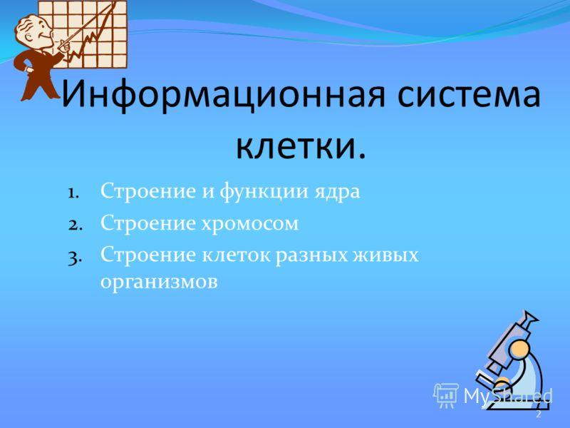 1. Строение и функции ядра 2. Строение хромосом 3. Строение клеток разных живых организмов Информационная система клетки. 2