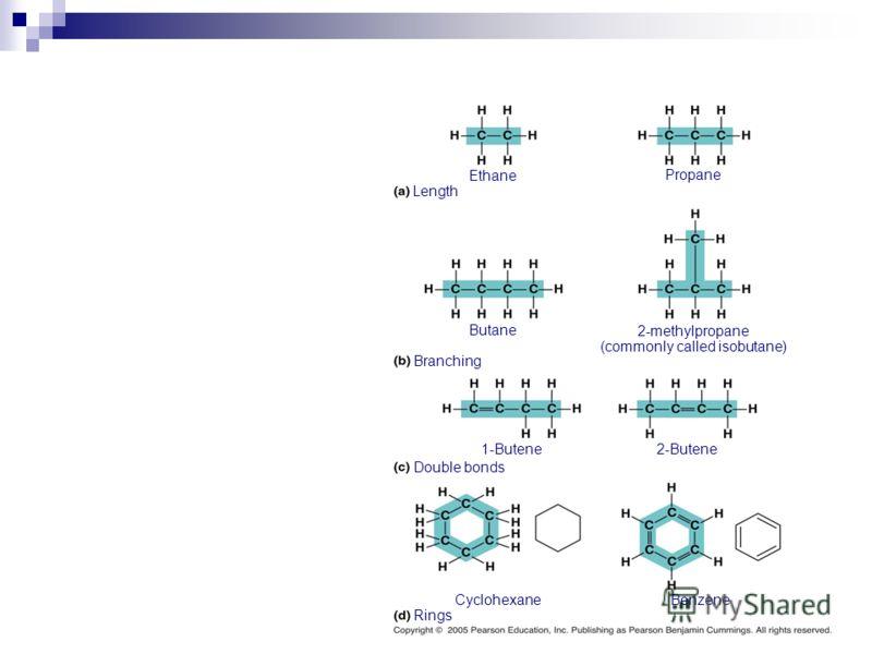 Length Ethane Propane Butane 2-methylpropane (commonly called isobutane) Branching Double bonds Rings 1-Butene2-Butene CyclohexaneBenzene
