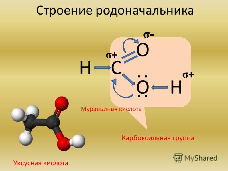 Строение родоначальника О Н Н С Карбоксильная группа О σ- σ+σ+ σ+σ+ : : Муравьиная кислота Уксусная кислота
