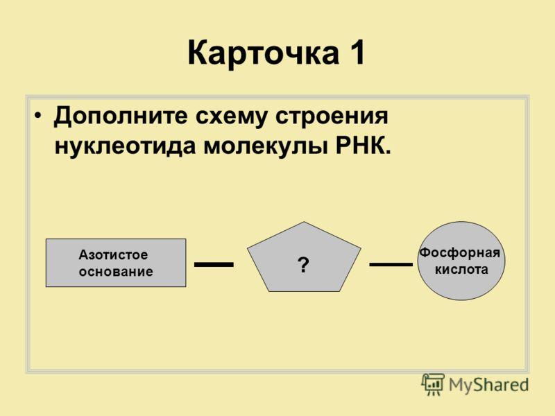 Карточка 1 Дополните схему строения нуклеотида молекулы РНК. Азотистое основание ? Фосфорная кислота