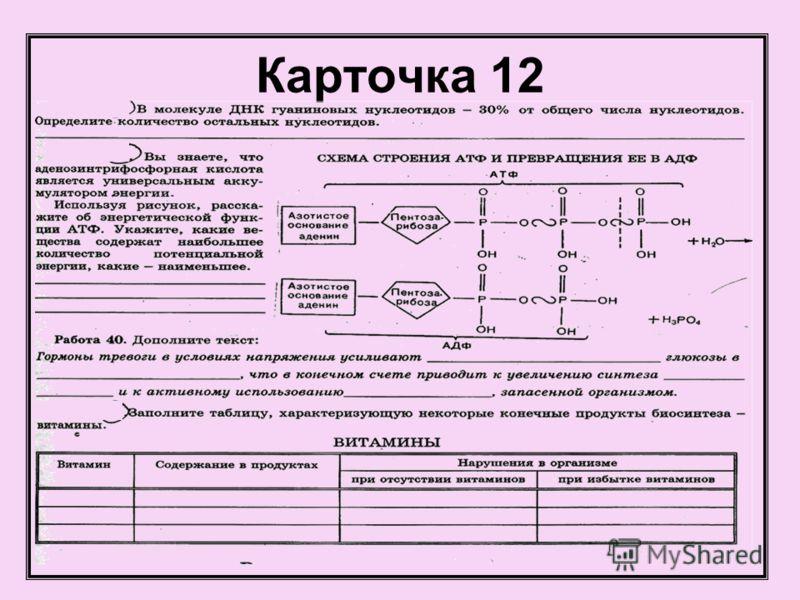 Карточка 12