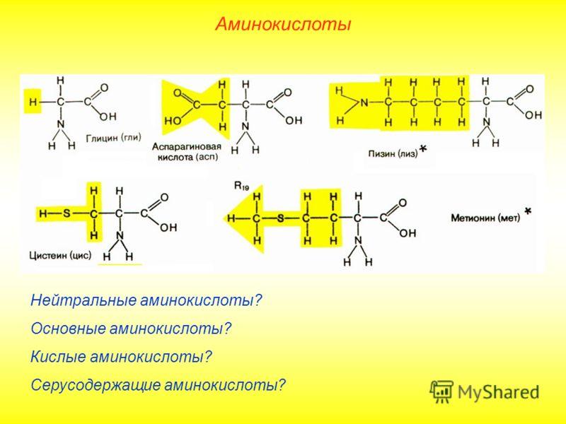 Нейтральные аминокислоты? Основные аминокислоты? Кислые аминокислоты? Серусодержащие аминокислоты? Аминокислоты