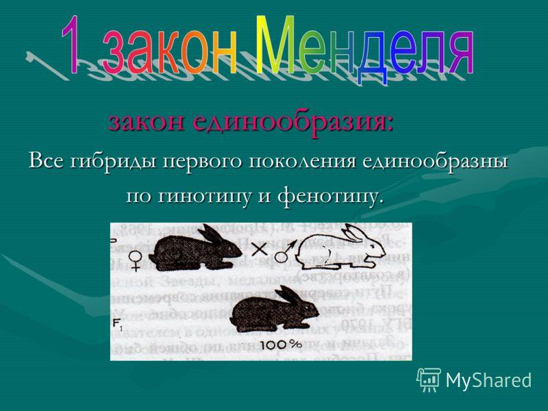 закон единообразия: закон единообразия: Все гибриды первого поколения единообразны Все гибриды первого поколения единообразны по гинотипу и фенотипу. по гинотипу и фенотипу.