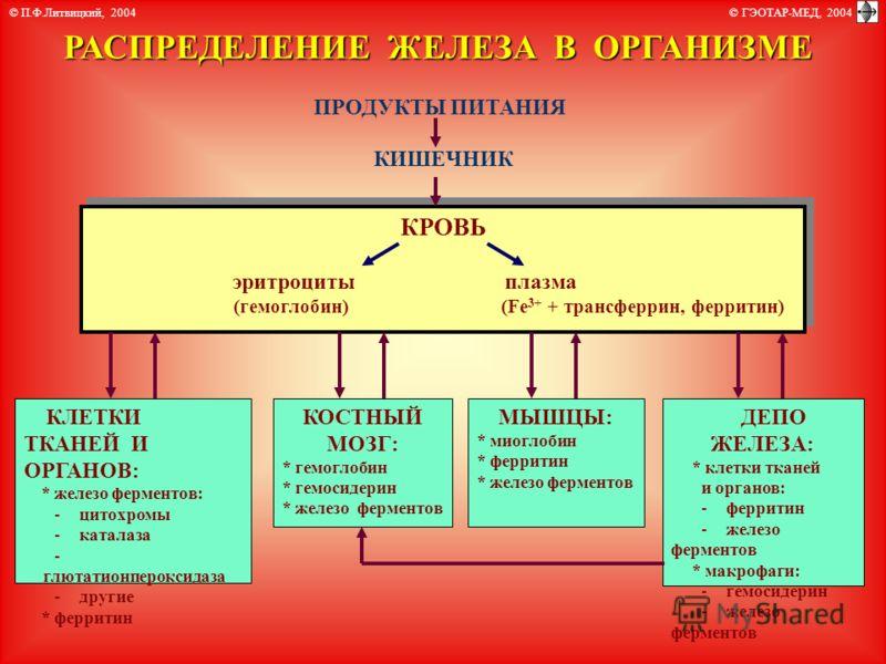 Сидеропения