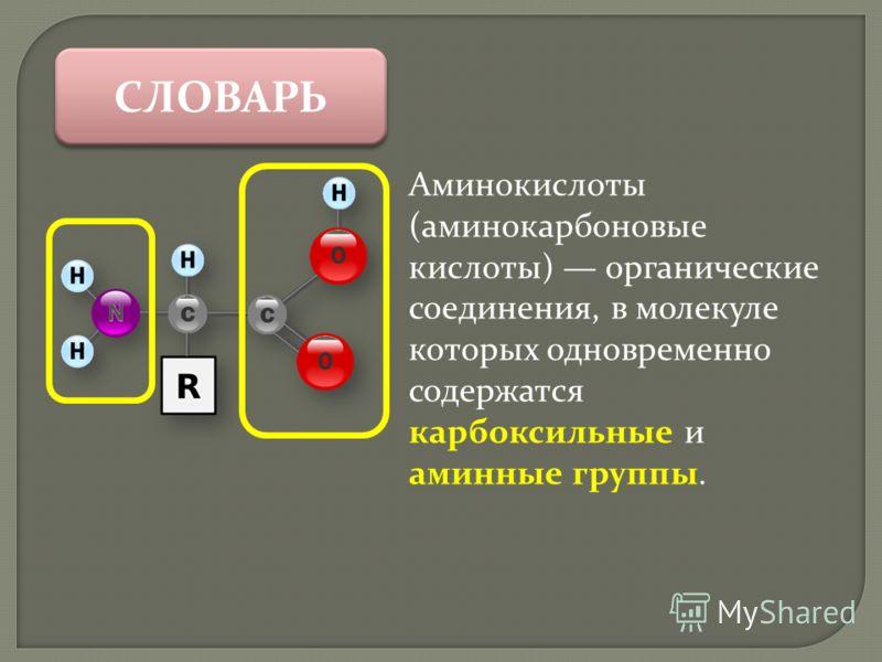 СЛОВАРЬ Аминокислоты (аминокарбоновые кислоты) органические соединения, в молекуле которых одновременно содержатся карбоксильные и аминные группы.