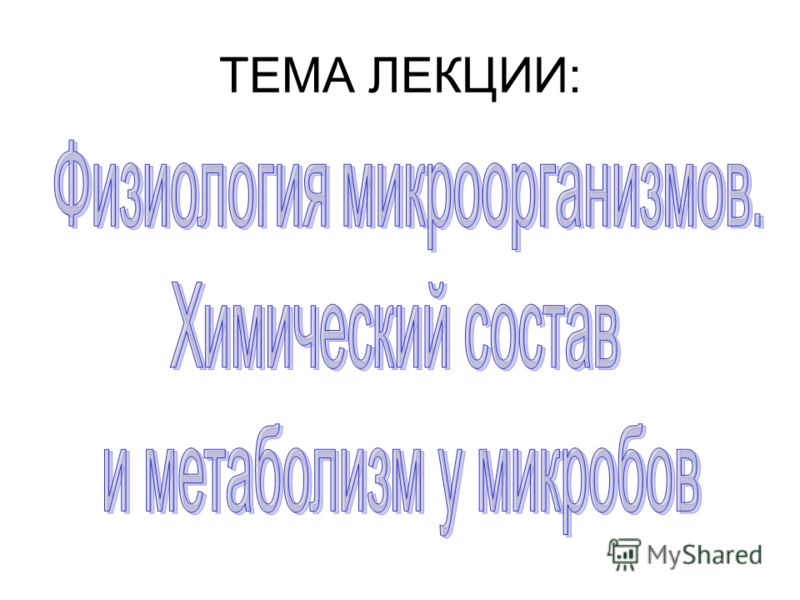 ТЕМА ЛЕКЦИИ: