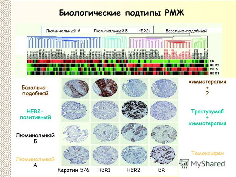 Биологические подтипы РМЖ Базально- подобный HER2- позитивный Люминальный Б Люминальный А химиотерапия + ? Трастузумаб + химиотерапия Тамоксифен Кератин 5/6 HER1 HER2 ER Люминальный А Люминальный Б HER2+Базально-подобный