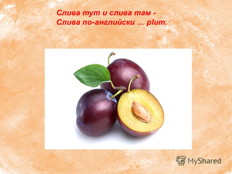 Слива тут и слива там - Слива по-английски … plum.