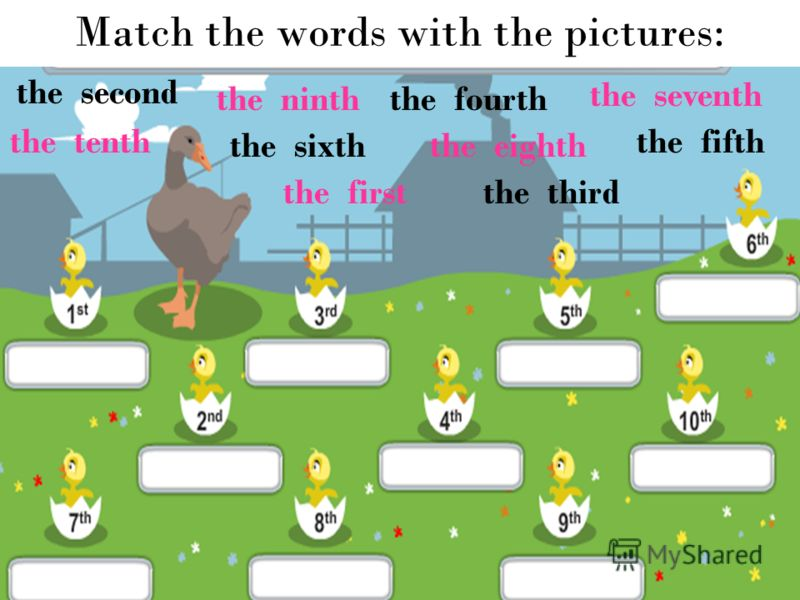 Match the words with the pictures: the second the ninth the third the seventh the sixth the eighth the fourth the first the tenth the fifth