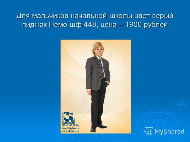 Для мальчиков начальной школы цвет серый пиджак Немо шф-448, цена – 1900 рублей