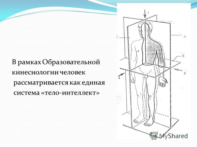 В рамках Образовательной кинесиологии человек рассматривается как единая система «тело-интеллект»