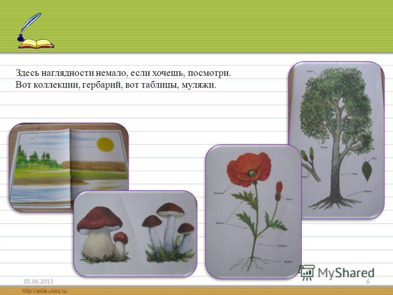 6 Здесь наглядности немало, если хочешь, посмотри. Вот коллекции, гербарий, вот таблицы, муляжи.