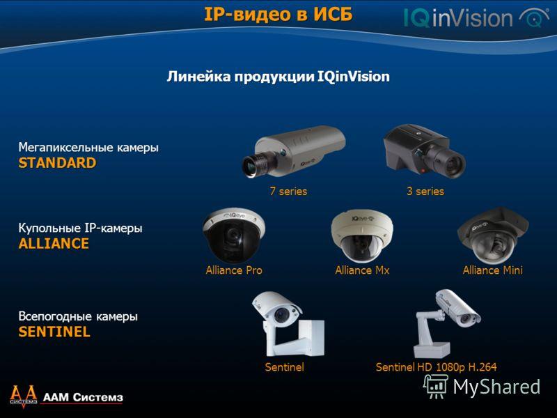Мегапиксельные камеры STANDARD Всепогодные камеры SENTINEL Купольные IP-камеры ALLIANCE Линейка продукции IQinVision 7 series 3 series Alliance Pro Alliance Mx Alliance Mini Sentinel Sentinel HD 1080p H.264 IP-видео в ИСБ