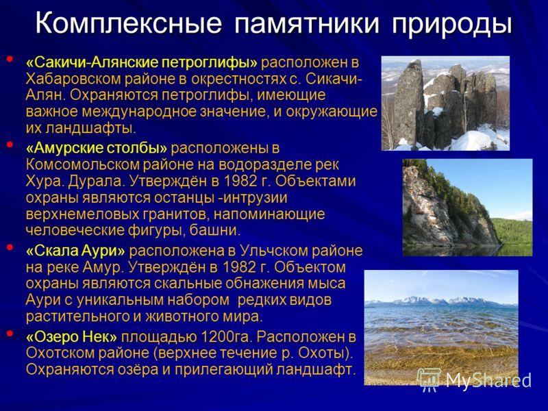Комплексные памятники природы «Сакичи-Алянские петроглифы» расположен в Хабаровском районе в окрестностях с. Сикачи- Алян. Охраняются петроглифы, имеющие важное международное значение, и окружающие их ландшафты. «Амурские столбы» расположены в Комсом
