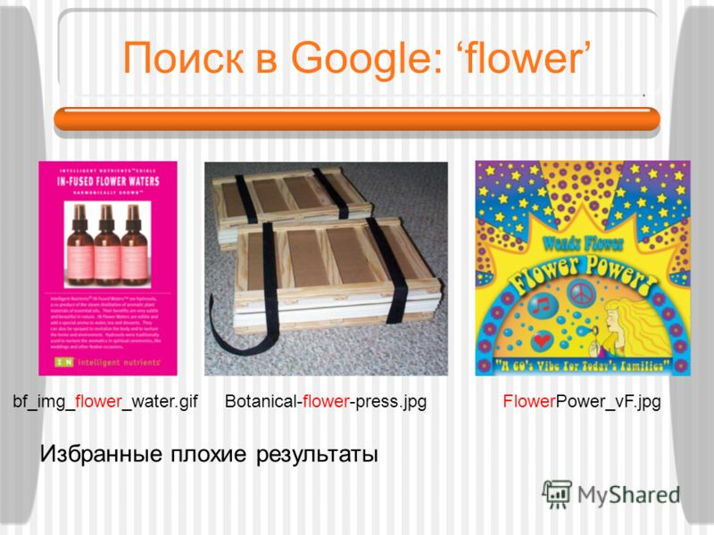 Поиск в Google: flower Botanical-flower-press.jpgbf_img_flower_water.gifFlowerPower_vF.jpg Избранные плохие результаты