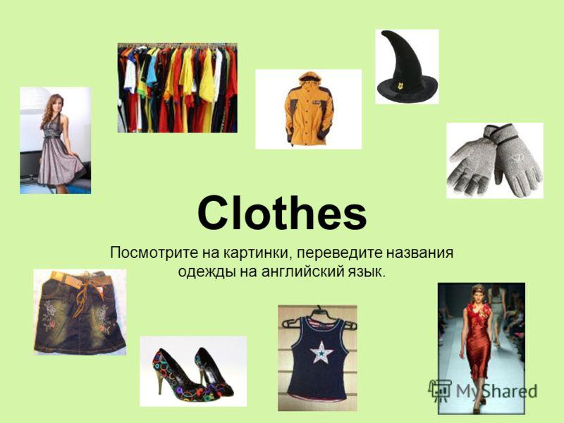 Язык Одежды