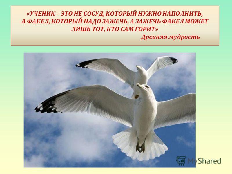 « УЧЕНИК – ЭТО НЕ СОСУД, КОТОРЫЙ НУЖНО НАПОЛНИТЬ, А ФАКЕЛ, КОТОРЫЙ НАДО ЗАЖЕЧЬ, А ЗАЖЕЧЬ ФАКЕЛ МОЖЕТ ЛИШЬ ТОТ, КТО САМ ГОРИТ » Древняя мудрость