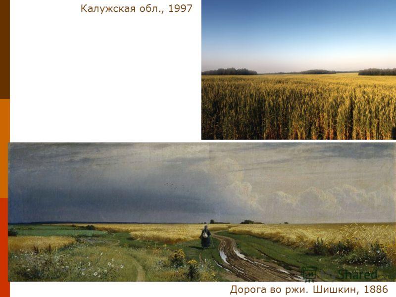 Дорога во ржи. Шишкин, 1886 Калужская обл., 1997