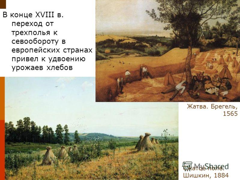 В конце XVIII в. переход от трехполья к севообороту в европейских странах привел к удвоению урожаев хлебов Сжатое поле. Шишкин, 1884 Жатва. Брегель, 1565