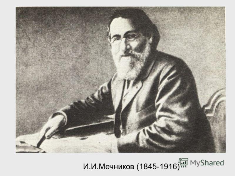 И.И.Мечников (1845-1916)