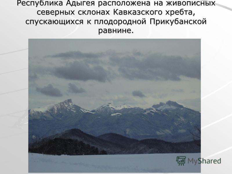 Республика Адыгея расположена на живописных северных склонах Кавказского хребта, спускающихся к плодородной Прикубанской равнине.