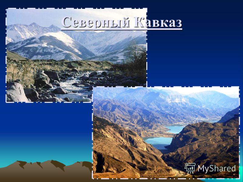 Кавказ географическое положение