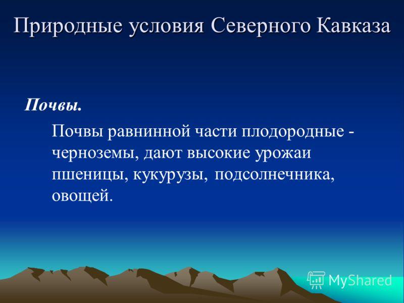 Почвы. Почвы равнинной части плодородные - черноземы, дают высокие урожаи пшеницы, кукурузы, подсолнечника, овощей. Природные условия Северного Кавказа