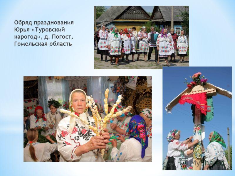 Обряд празднования Юрья «Туровский карогод», д. Погост, Гомельская область