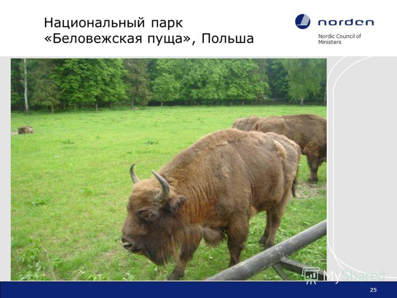 Nordic Council of Ministers 25 Национальный парк «Беловежская пуща», Польша 25