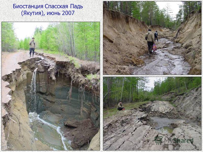 Биостанция Спасская Падь (Якутия), июнь 2007