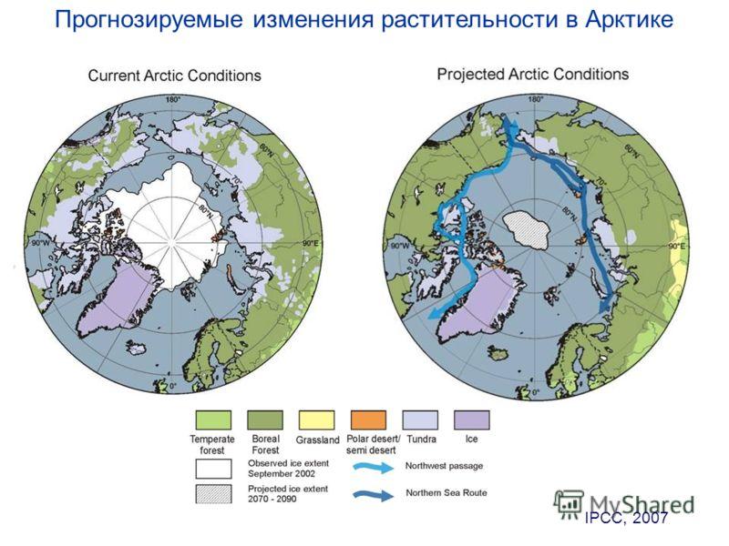 IPCC, 2007 Прогнозируемые изменения растительности в Арктике