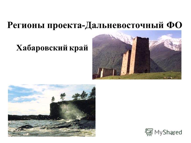 12 Регионы проекта-Дальневосточный ФО Хабаровский край