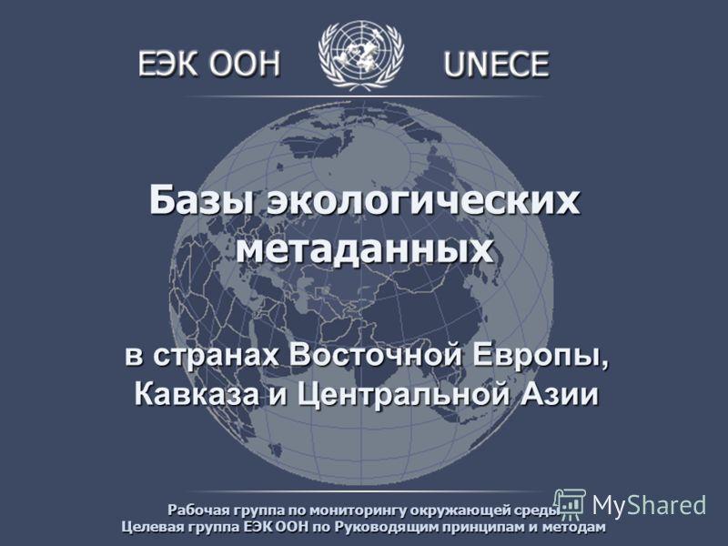Рабочая группа по мониторингу окружающей среды Целевая группа ЕЭК ООН по Руководящим принципам и методам Базы экологических метаданных в странах Восточной Европы, Кавказа и Центральной Азии