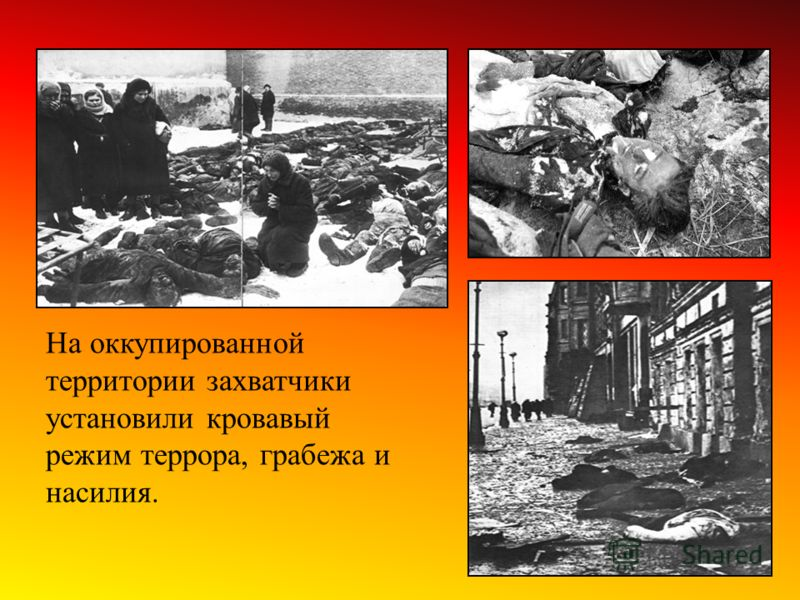 На оккупированной территории захватчики установили кровавый режим террора, грабежа и насилия.