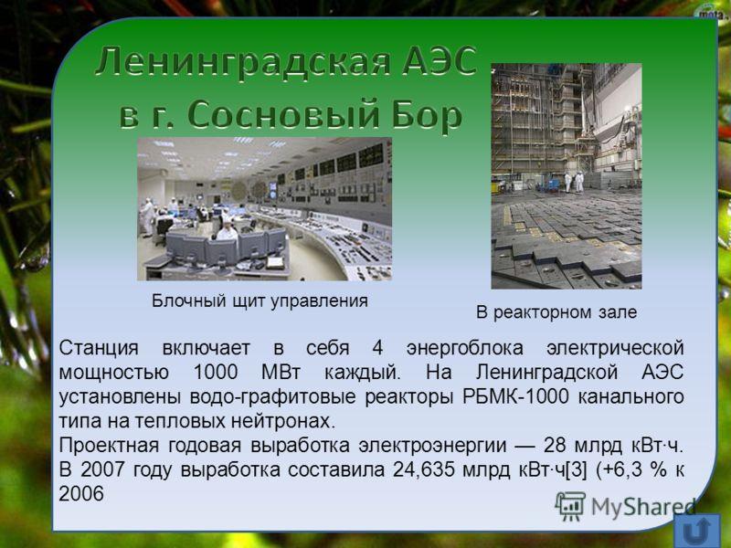 Станция включает в себя 4 энергоблока электрической мощностью 1000 МВт каждый. На Ленинградской АЭС установлены водо-графитовые реакторы РБМК-1000 канального типа на тепловых нейтронах. Проектная годовая выработка электроэнергии 28 млрд кВт·ч. В 2007