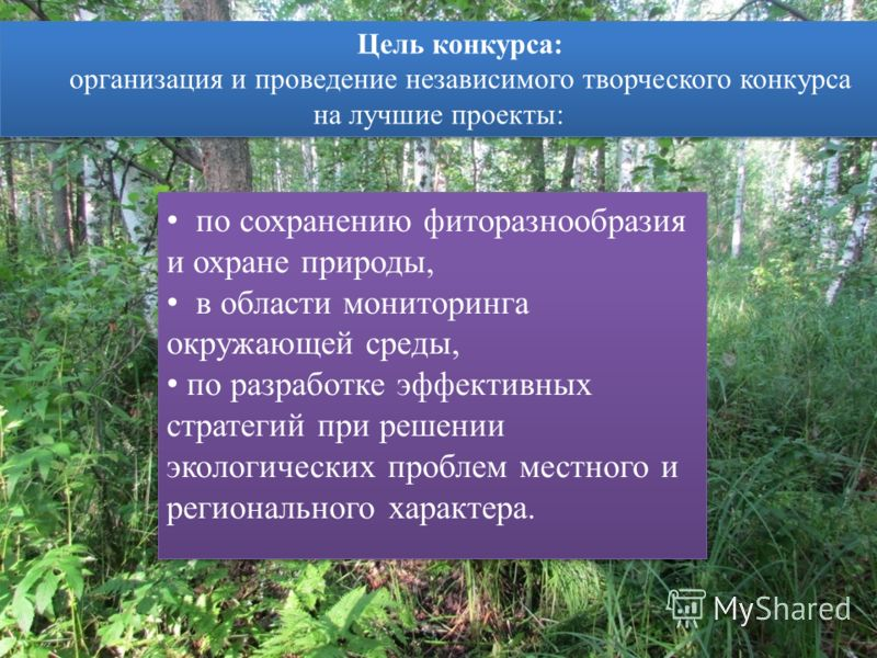 по сохранению фиторазнообразия и охране природы, в области мониторинга окружающей среды, по разработке эффективных стратегий при решении экологических проблем местного и регионального характера. по сохранению фиторазнообразия и охране природы, в обла