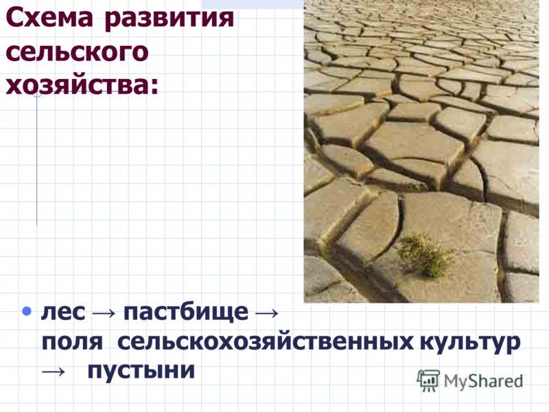 Схема развития сельского хозяйства: лес пастбище поля сельскохозяйственных культур пустыни